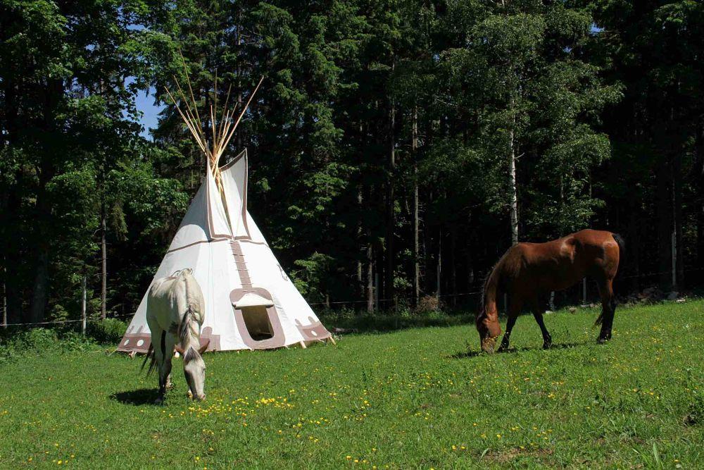 Teepee s koňmi